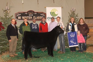 Grand Champion MaineTainer Female and 5th Overall Breeds at the Michigan Winter Classic. Raised by Dave Caffee. Sold as Lot 2 in the Williams/Welshans Elite Female Sale. Shown by Jayson Berry.